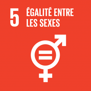 SDG goals_FR_5